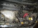 Toyota Ipsum 26